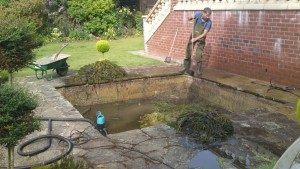 cleaning out a backyard pond
