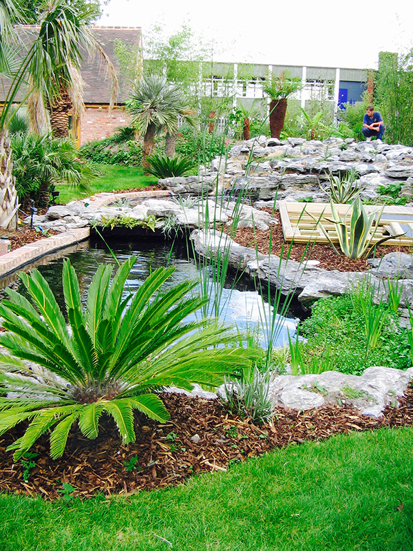 Small garden pond with a well maintained plants