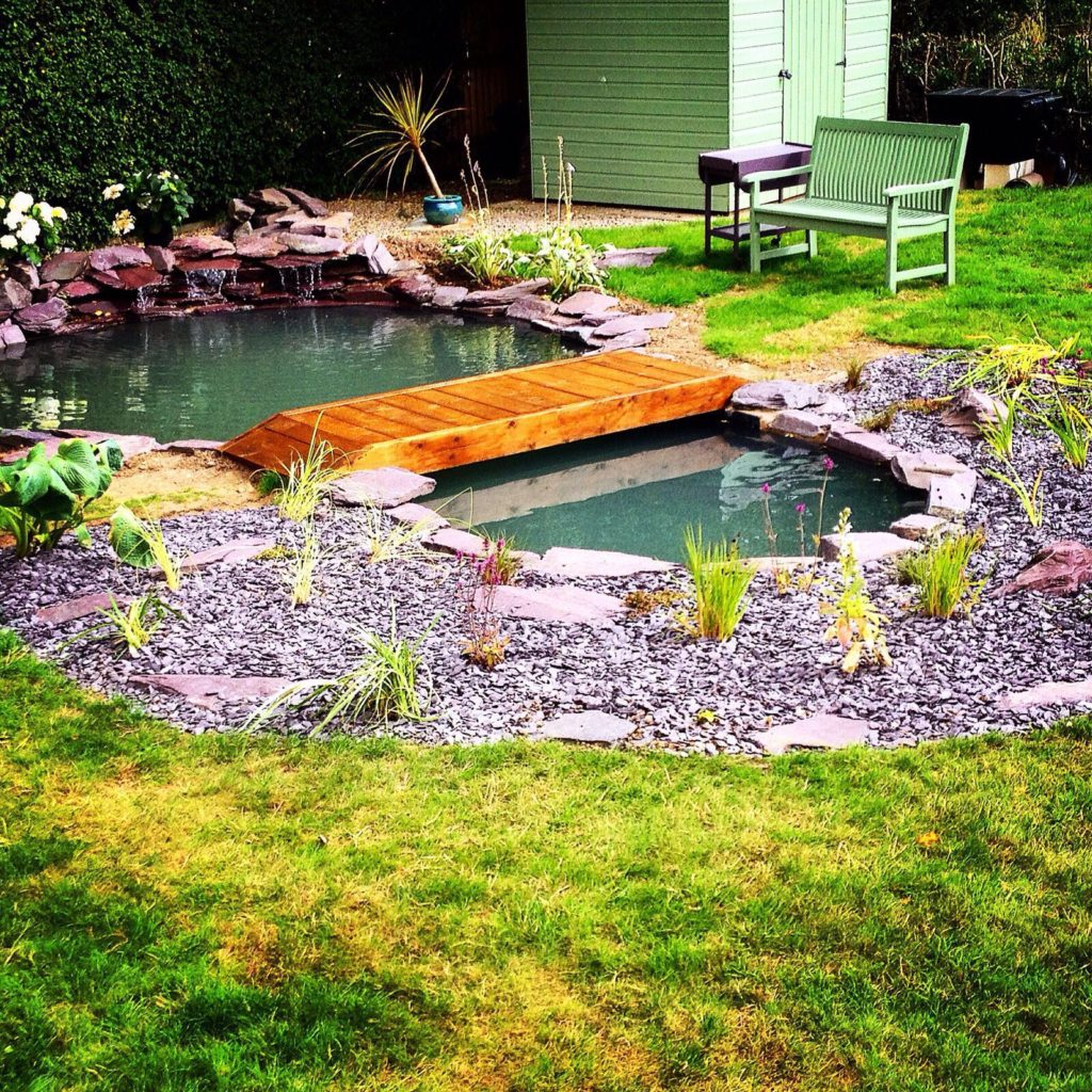 Well maintained small garden pond